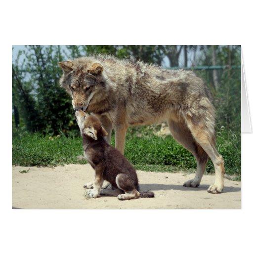 lobo con el perrito tarjeta de felicitación