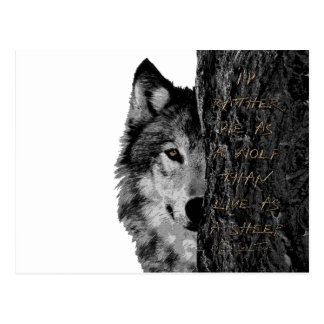 Lobo contra ovejas tarjetas postales
