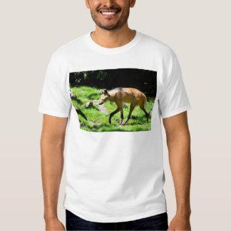 Lobo crinado que camina en hierba polera