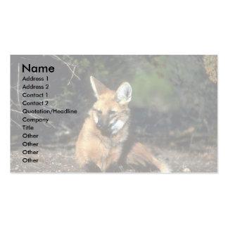 Lobo crinado que se acuesta tarjetas de visita