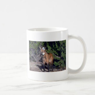 Lobo crinado taza básica blanca