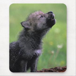 Lobo Cub que grita Alfombrillas De Ratones