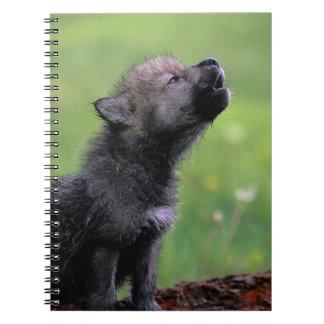 Lobo Cub que grita Notebook
