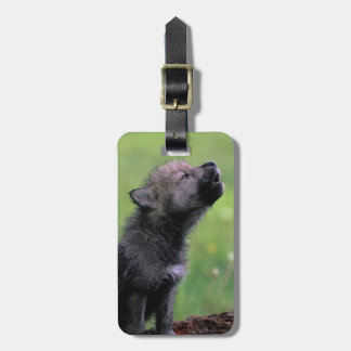 Lobo Cub que grita Etiqueta Para Maleta