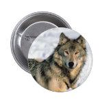 Lobo de descanso pin