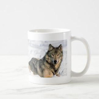 Lobo de descanso tazas