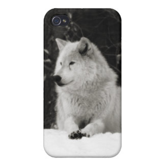 Lobo de la nieve iPhone 4/4S funda