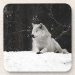 Lobo de la nieve posavasos