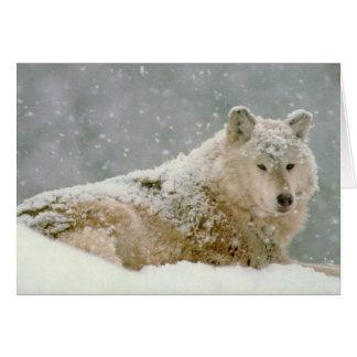 Lobo de la nieve tarjeta de felicitación