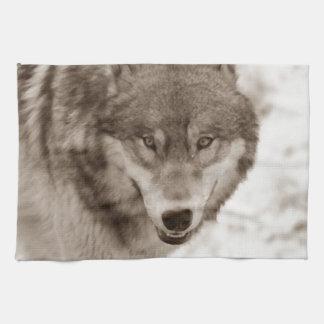 Lobo de la sepia toallas