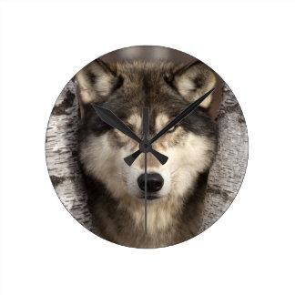 Lobo de madera de Jim Zuckerman Reloj Redondo Mediano