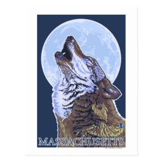 Lobo de MassachusettsHowling Postales