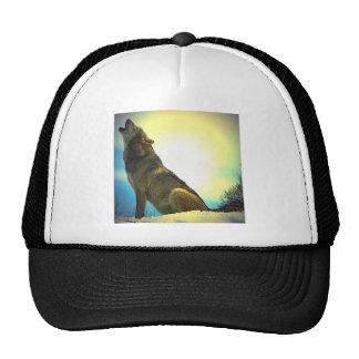 Lobo del grito en la puesta del sol gorro
