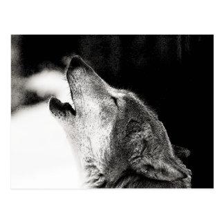 Lobo del grito tarjeta postal