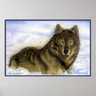 Lobo del invierno póster