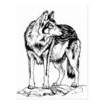 Lobo en bosquejo de las rocas postal