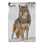Lobo en el reloj iPad mini fundas