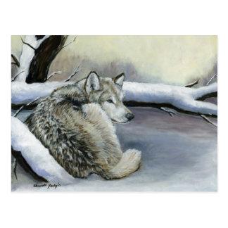 Lobo en la postal animal del arte de la nieve