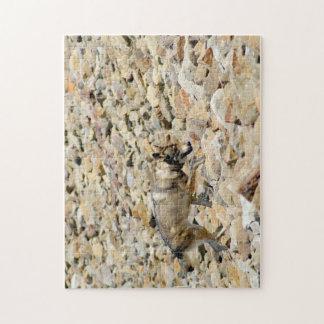 Lobo en las rocas puzzle