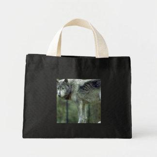 Lobo en un tocón de árbol bolsas