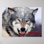 lobo enojado impresiones