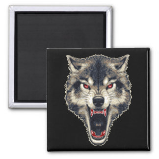 Lobo feroz imán cuadrado