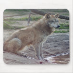 Lobo gris 8x10 Mousepad Alfombrillas De Ratones