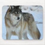 Lobo gris alfombrillas de raton