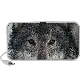 Lobo gris mini altavoces