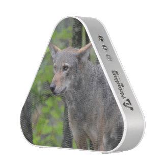Lobo gris altavoz bluetooth