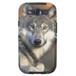 lobo gris del timberwolf galaxy SIII protector
