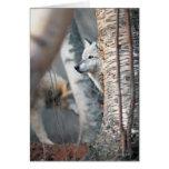 Lobo gris detrás del árbol tarjeta de felicitación