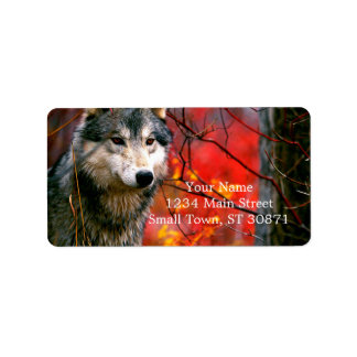 Lobo gris en follaje rojo y amarillo hermoso etiquetas de dirección