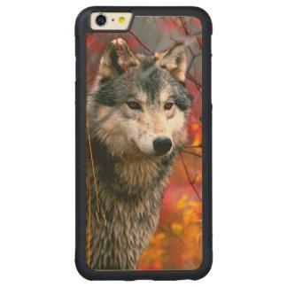 Lobo gris en follaje rojo y amarillo hermoso funda de arce bumper carved® para iPhone 6 plus