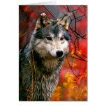 Lobo gris en follaje rojo y amarillo hermoso tarjeta de felicitación