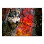 Lobo gris en follaje rojo y amarillo hermoso tarjeta pequeña