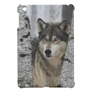 Lobo gris en los árboles