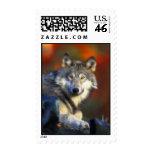 Lobo gris, fotografía de Digitaces en peligro de l