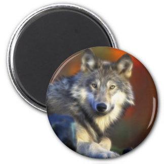 Lobo gris, fotografía de Digitaces en peligro de l Imán Redondo 5 Cm