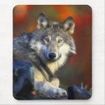 Lobo gris, fotografía de Digitaces en peligro de Tapete De Ratones
