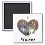 Lobo gris iman de nevera