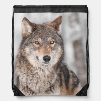 Lobo gris (lupus de Canis) con una parte posterior Mochilas