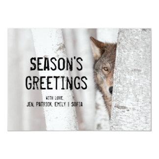 """Lobo gris (lupus de Canis) detrás del árbol Invitación 5"""" X 7"""""""
