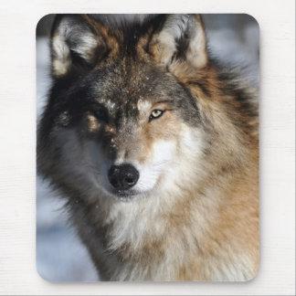 Lobo gris mouse pads