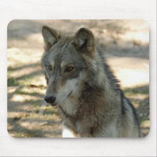 Lobo gris Mousepad de los lobos Tapetes De Raton