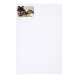 Lobo gris o lobo de madera que pone en la nieve papeleria personalizada
