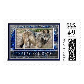 Lobo gris o sellos grandes del navidad de los