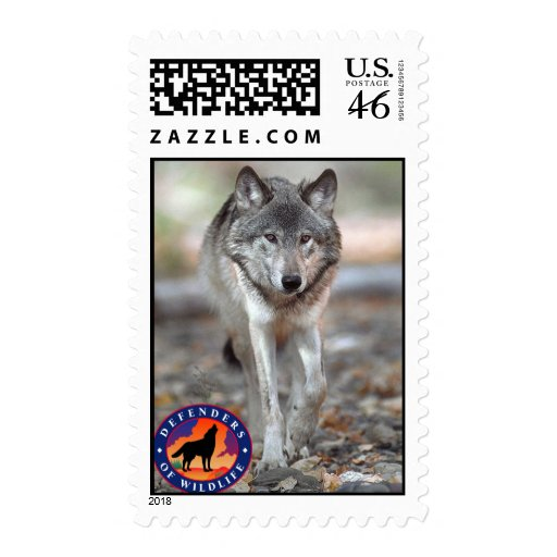 Lobo gris franqueo