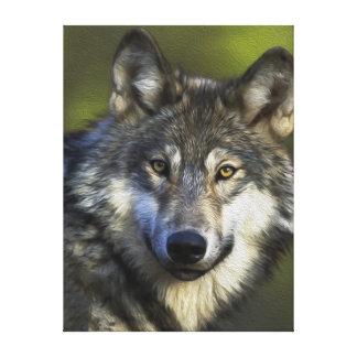 Lobo gris solitario impresiones en lona estiradas