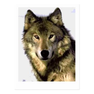 Lobo gris postal